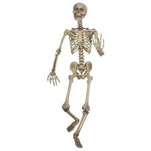 【コスプレ】87283 Lifesize Posable Skeleton ライフサイズ ポーザブル スケルトン - 拡大画像
