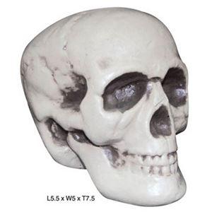 【コスプレ】80689 Realistic Skull リアリスティック スカル - 拡大画像
