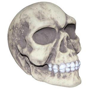 【コスプレ】82049 Creepy Skull - 拡大画像