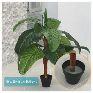 人工観葉植物 クワズイモ 105cm