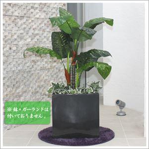人工観葉植物 ディフェンバキア 120cm - 拡大画像