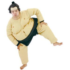 【コスプレ】 相撲コスチューム - 拡大画像