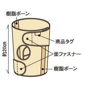 ひざの名医戸田先生開発!医療機関でも大絶賛 かるがる膝ベルト 2枚セット ベージュ M