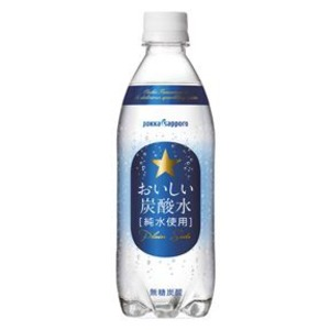 【まとめ買い】ポッカサッポロ おいしい炭酸水 ペットボトル 500ml 24本入り(1ケース)