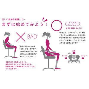 hihip ハイヒップ 美姿勢サブチェア 骨盤On the Chair HHI-EV-R/O001 レッド/オレンジ4