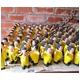 【エケコ人形15cm】金運の色黄色イエロー(黄色) 限定モデル女性に人気!(ペルー直輸入) - 縮小画像4