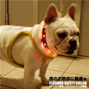 夜のお散歩に大活躍! ペット用LEDフラッシュ首輪 各色 黒 1点 - 拡大画像