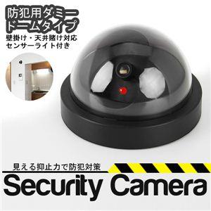 そこにあるだけで抑止力が生まれる!ダミードーム型セキュリティーカメラ 1個 - 拡大画像