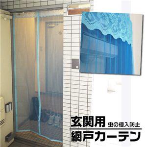 【ECOで】風を通して、蚊や虫はシャットアウト!! 玄関用 マグネット網戸カーテン 【涼しい 】 ブルー 1点 - 拡大画像