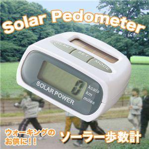 【運動・ダイエットに!】これ一つで歩数、距離、消費カロリーを同時に計測!電池いらず!ソーラー歩数計 1個 - 拡大画像