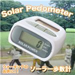 【運動・ダイエットに!】これ一つで歩数、距離、消費カロリーを同時に計測!電池いらず!ソーラー歩数計 1個