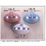 リーベックス LEDセンサーライト・ミニ LSL-W