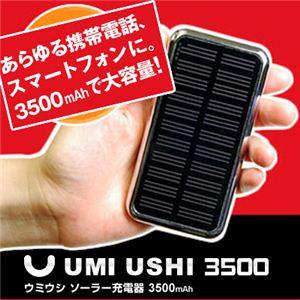 UMI USHI 3500 ウミウシ3500 充電器