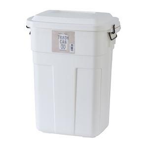 トラッシュカン/蓋付きゴミ箱 【30L ホワイト】 幅39cm ポリプロピレン製 日本製 LFS-934WH