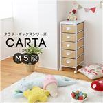 クラフトボックスシリーズ CARTA M5段 収納ボックス NOR-0003-WHNA