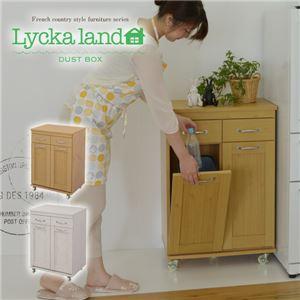 Lycka land ダストボックス FLL-0008-NA ナチュラル
