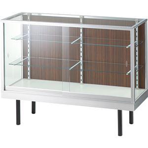 SWITCH(スウィッチ) ガラスショーケース 平ケース 【ガラス棚2枚】 幅120cm