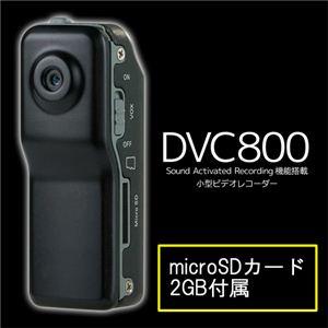 ミニビデオレコーダーDVC800 - 拡大画像