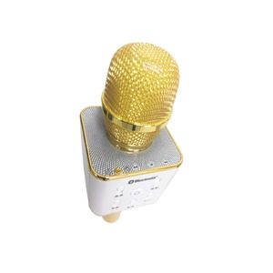 CICONIA カラオケミュージックマイク WMP-0001GD ゴールド