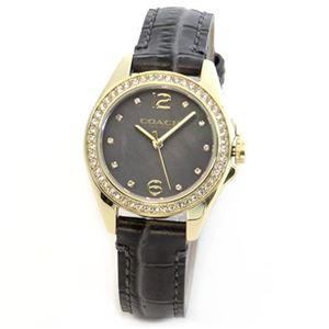 【レディス腕時計】Coach(コーチ) ダイヤルにはシェルの輝きとラインストーン ラグジュアリーなレディス腕時計 14502101