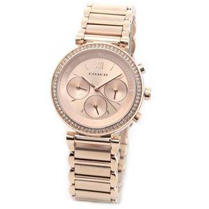 【レディス腕時計】Coach(コーチ) 煌びやかなラインストーンの輝き ラグジュアリーなレディスマルチカレンダー腕時計 14502038