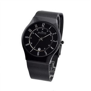 SKAGEN(スカーゲン) 233XLTMB メンズ 腕時計 h01