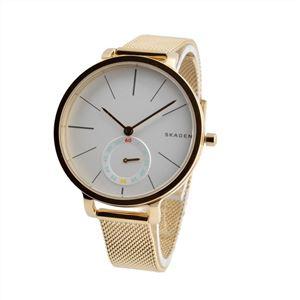 SKAGEN(スカーゲン) SKW2436 レディース 腕時計