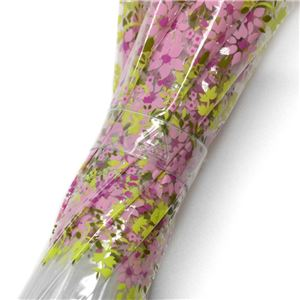 Fulton (フルトン) C605 28315 Funbrella-4 Pretty Petals 子供用 キッズ用 ビニール傘 長傘 バードケージ ミニ アンブレラ 英国王室御用達ブランド