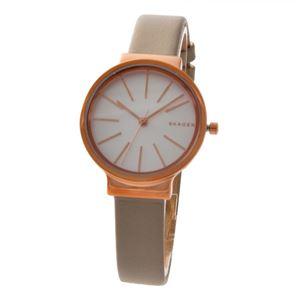SKAGEN (スカーゲン) SKW2481 アンカー レディース 腕時計