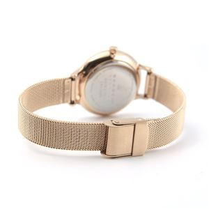 SKAGEN(スカーゲン) SKW2151 レディス腕時計 ラインストーンインデックス メッシュストラップ