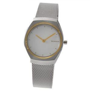 SKAGEN(スカーゲン) SKW2654 アスタ レディース 腕時計