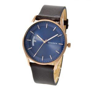 SKAGEN(スカーゲン) SKW6395 ホルスト メンズ 腕時計