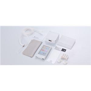 トリニティ iPod nano用 抗菌スターターパック(クリア)[Starter Pack for iPod nano (7th) Clear] TR-SPNN12-CL - 拡大画像