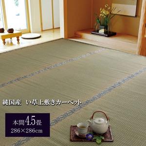 純国産/日本製 糸引織 い草上敷 『湯沢』 本間4.5畳(約286×286cm)の詳細を見る