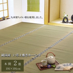 純国産/日本製 糸引織 い草上敷 『柿田川』 本間2畳(約191×191cm)