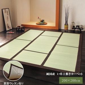 純国産/日本製 い草カーペット 『F蔵』 ブラウン 約200×200cm 正方形(裏:ウレタン張り)の詳細を見る