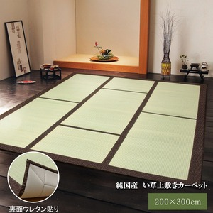 純国産/日本製 い草カーペット 『F蔵』 ブラウン 約200×300cm(裏:ウレタン張り)の詳細を見る