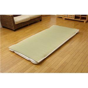 医師との共同開発 い草寝具 『アスク 汗取P』 セミダブル 約120×200cmの詳細を見る
