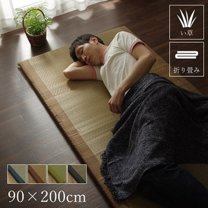 純国産/日本製 固わた40mm入りい草マット 『ノア40 Sらくらく』 ブラウン 約90×200cmの詳細を見る