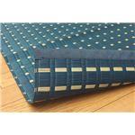 純国産 掛川織 い草ラグカーペット 『novel』 ブルー 約191×191cm