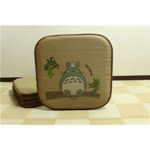 純国産/日本製 捺染アドラ い草座布団 『どんぐりの木 トトロ 5枚組』 約55×55cm×5P
