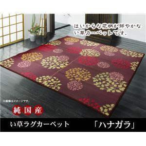 純国産 袋織い草カーペット 『ハナガラ』 ブルー 約191×191cmの詳細を見る