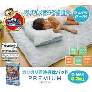 冷感 枕パッド 洗える 旭化成 ベンベルグ使用 『ガリガリ君 プレミアム』 43×60cm - 拡大画像