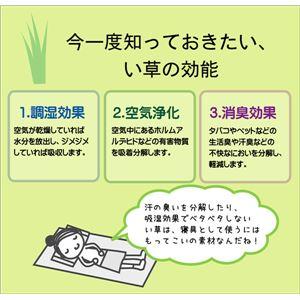 高さが調節できる い草枕 『高さが変わる枕 PP 箱付』 40×15cm(中材:PPパイプ)
