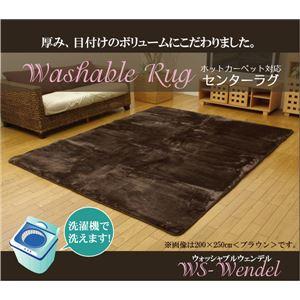洗える ウォッシャブルラグカーペット 『WSウェンデルNSK』 アイボリー 185×185cmの詳細を見る