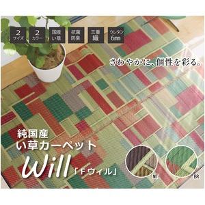 純国産 い草ラグカーペット 『Fウィル』 マルチカラー 約191×191cm - 拡大画像