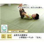 洗える PPカーペット 『五木』 江戸間6畳(261×352cm)