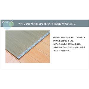 純国産 やわらかい草の敷きパッド 『ラッセル 素肌草 汗取P』 88×200cm