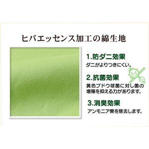 枕カバー 洗える ヒバエッセンス使用 『ひばピロケース』 グリーン 2枚組 約43×63cm