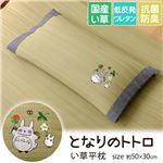枕 まくら い草枕 消臭 ピロー 国産 となりのトトロ 『トトロ 木いちご 平枕』 約50×30cm